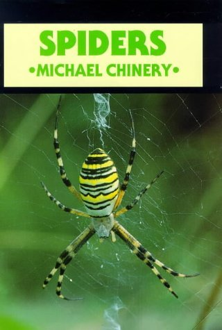 Front cover of Spiders by Michael Chinery, illustrated by Sophie Allington
