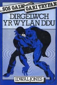 Front cover of Dirgelwch Yr Wylan Ddu by Idwal Jones