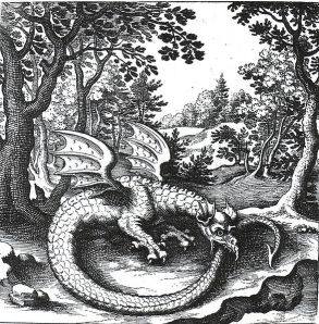 Dragon Ouroboros