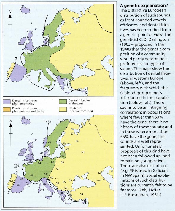 Distribution of dental fricatives and the O blood-group in Europe (from David Crystal's )