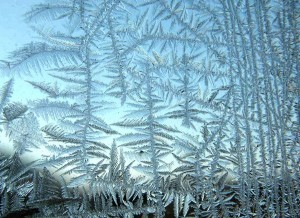 Frost on window (see Kenneth G. Libbrecht, )